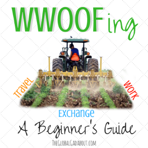 WWOOFing: A Beginner's Guide