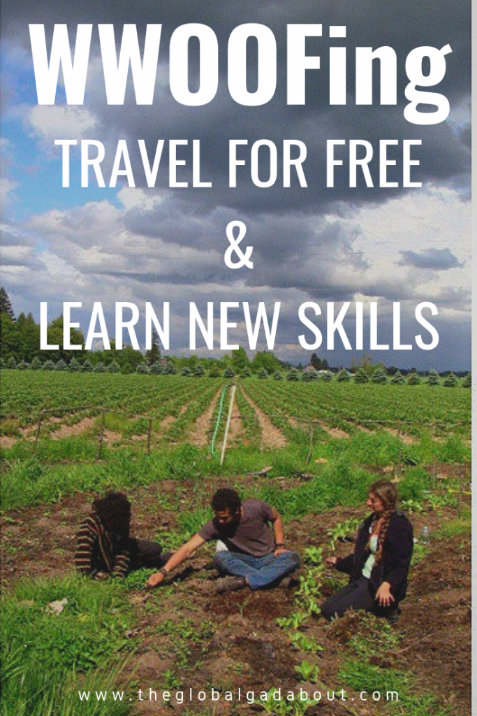 What is WWOOFing? Click through to learn all about this #voluntourism opportunity and why it's great for #budgettravel & a way to learn new skills! #wwoof #wwoofing #cheaptravel #freetravel #theglobalgadabout #travelblog #travelblogger
