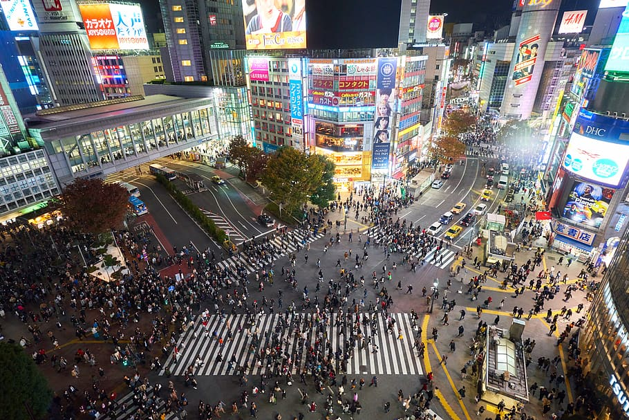 Shibuya Crossing in Japan at night.