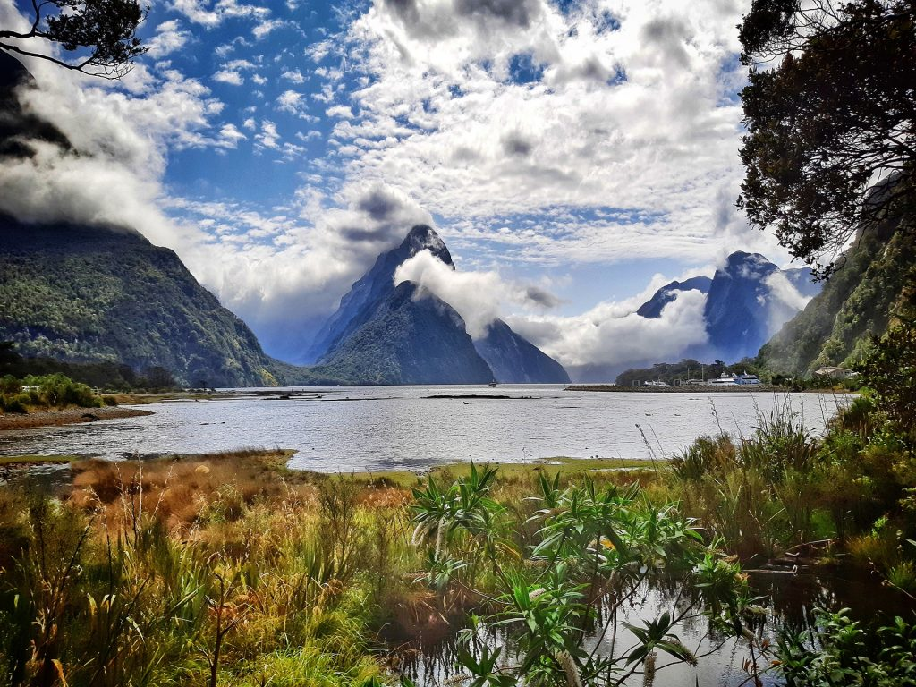 Milford Sound in New Zealand - misty mountains in the background, a lush lake in the foreground.